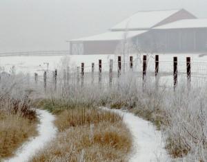 Landscape and Nature  (3rd) SnowTracks - Scott Smeal