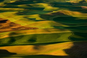 Farming the Palouse (2006)