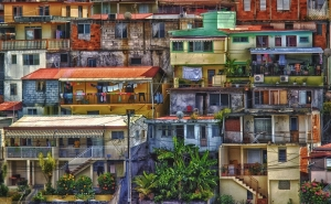 Martinique Neighborhood - Digital 1st