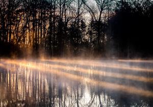 Christi HermanSmoke Rays On The Water