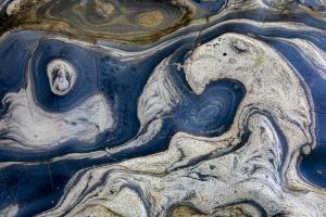 3rd Place - Still Life & AbstractNatural Abstractsby David Anglin