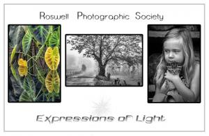 2019 Expressions of Light