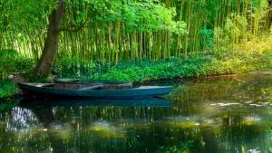 Serenity-Monet's GardenRocky MooreLandscape & Nature
