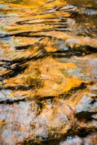 Wildcat creek #1Cheryl TarrStill Life & Abstract